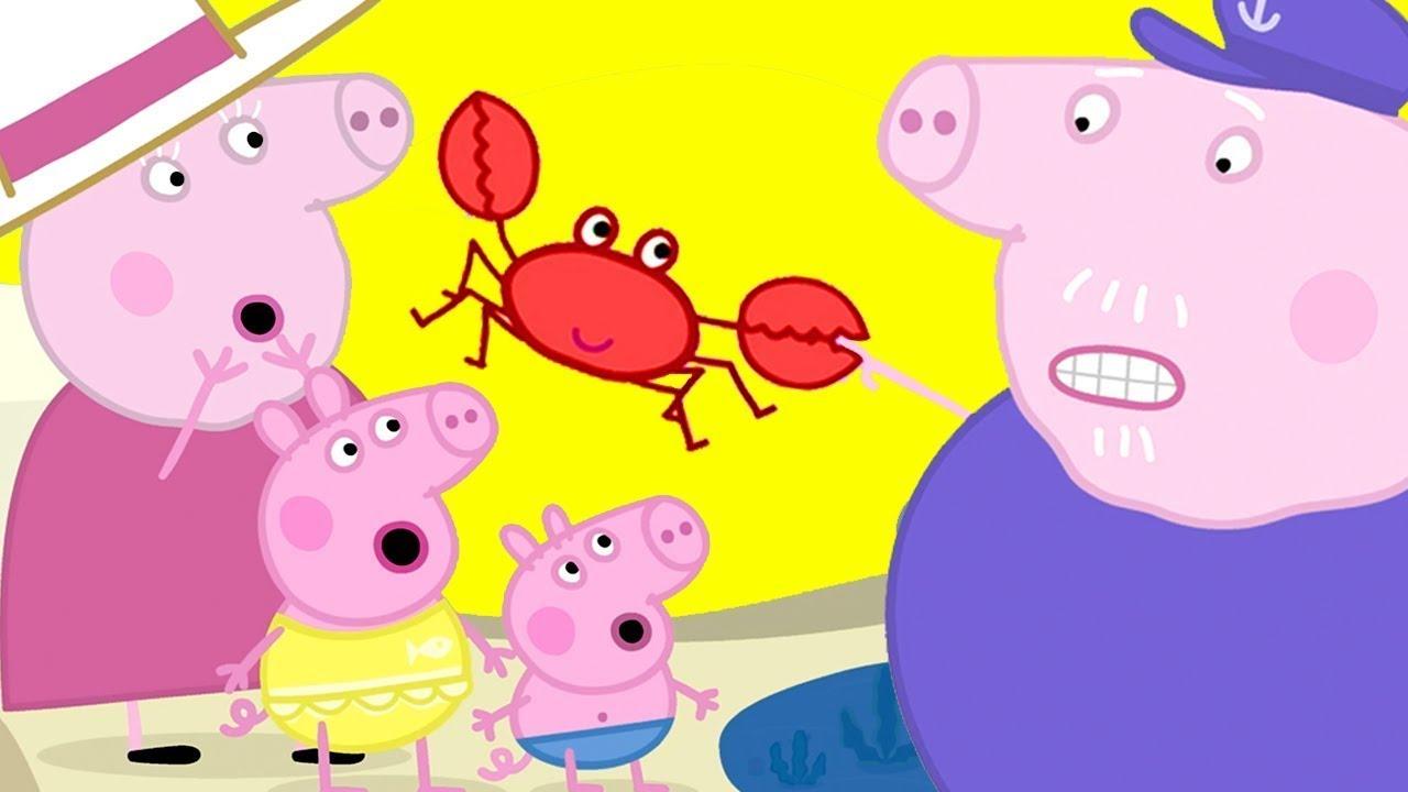 Zomer met Peppa ☀️ Tekenfilm 🍦 Peppa Pig Nederlands Compilatie Nieuwe