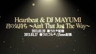 Heartbeat & DJ MAYUMI - 君の気持ち ~Ain