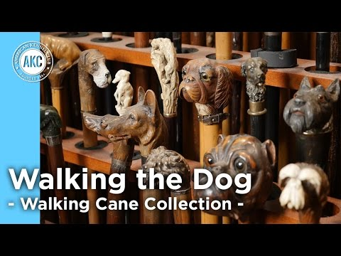 Walking the Dog - The Walking Cane Collection - AKC Art Tour with Jim