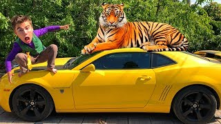 Mr. Joe VS Tigris VS Green Man on Corvette in Car Service VS Yellow Man in POOL on Camaro for Kids