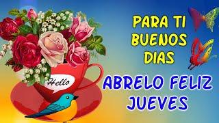 Feliz Jueves - ABRELO Frases de BUENOS DIAS - Una Rosa para Ti