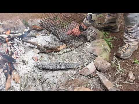 S:4 E:5 HUNTING ALONE IN AFRICA with Remi Warren Part 2