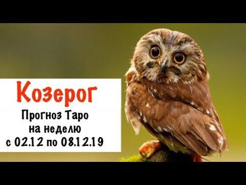 Козерог _ гороскоп таро на неделю с 02.12 по 08.12.19 _ Таро прогноз