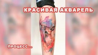 Акварель  Олень тату  Процесс  Мастер   Курганов Илья  Солнечногорск, Клин