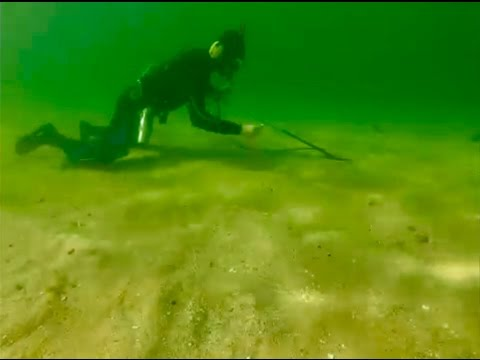 Underwater metal detecting gold, LJR#61