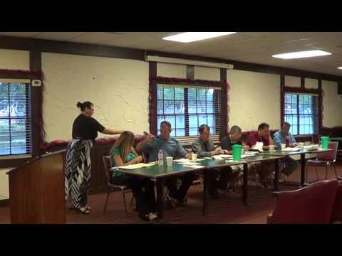 6/28/16 International Village Board of Directors meeting Pt 2