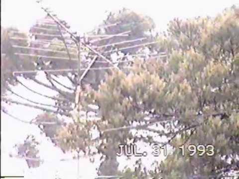 Inverno1993