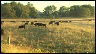 Funk Farms of Shirley, Ill. - 2012 ESAP Region III Winner