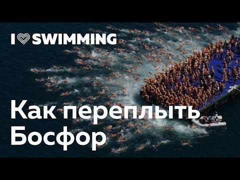Как переплыть Босфор — тренер I Love Swimming и победитель заплыва Андрей Волков