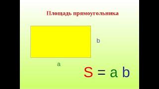 Площадь прямоугольника.  Площадь квадрата.