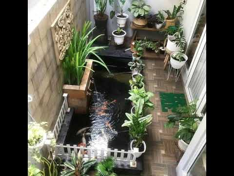 10 contoh atau design kolam ikan minimalis - youtube