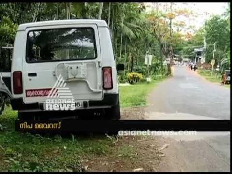 Central animal husbandry team to research to find the Origin of Nipah