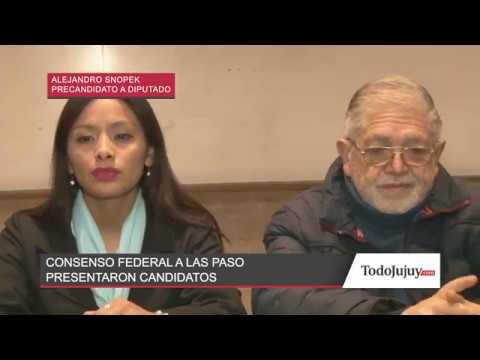 Consenso Federal de Jujuy presentó sus candidatos para las PASO