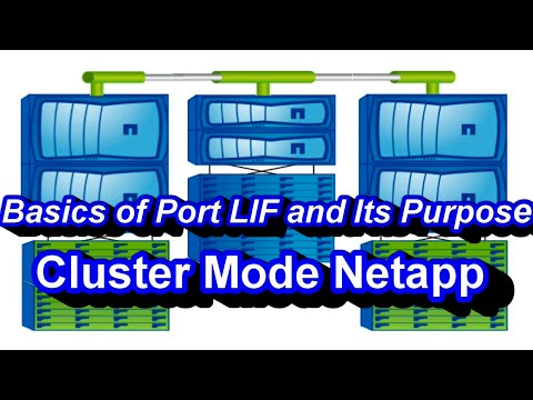 Intro on Ports Role, LIFs Role And Their Purpose