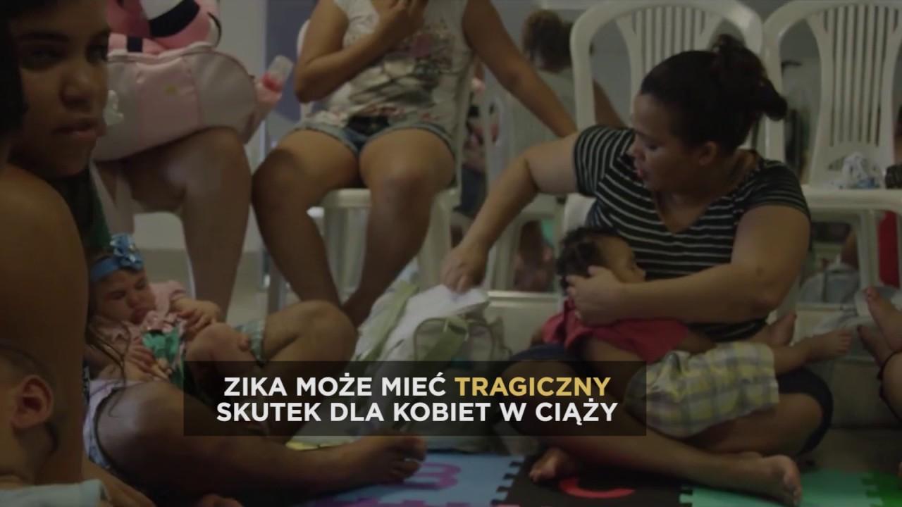 MOSQUITO – Zagrożenie wirusem Zika | Discovery Channel