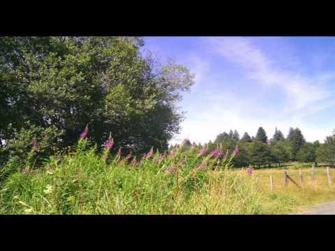 Yumuşak Müzik, Rahatlatıcı, Doğa, Fransa, Güzel Bir Melodi, Güzel Müzik