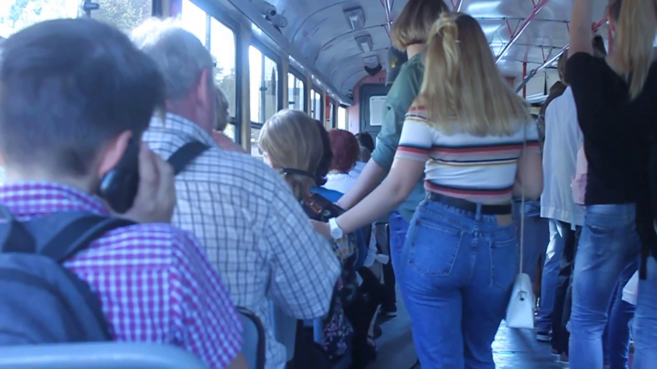 Голые жопа как трамвай вдова онлайн картинки