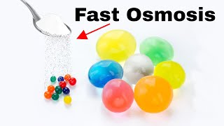 What Happens When You Put Salt on Orbeez? High Speed Water Absorption Experiment