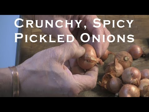 Crunchy, Spicy Pickled Onions
