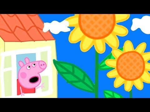 Peppa Pig Official Channel 🌻  Huge Flowers In Peppa Pig's Garden