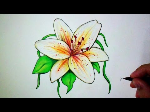 comment dessiner une fleur de lys tutoriel youtube. Black Bedroom Furniture Sets. Home Design Ideas