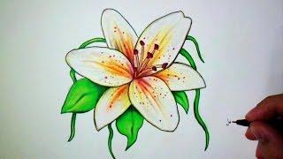 Comment dessiner une fleur de Lys [Tutoriel]