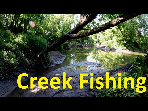 Multispecies Creek Fishing - Largemouth Bass, Striped Bass, Channel Catfish, Freshwater Drum