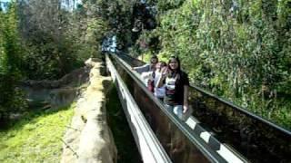Escalators at the ZOO!! :D