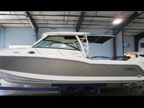 2017 Boston Whaler 315 Conquest Boat For Sale at MarineMax Clearwater