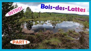 Tourbière du Bois des Lattes: INTRO (part 1)