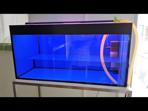 LIOW VIDEO: Setting Up My 3 Feet Flowerhorn Tank 三尺罗汉鱼缸