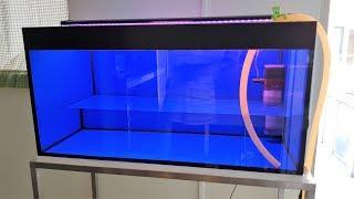 LIOW VIDEO: Setting up my 3 feet flowerhorn tank 三尺罗汉鱼缸