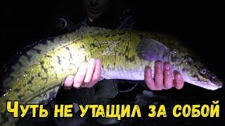 Он ЕЛЕ пролез в Лунку Жерлицы на Оке Рыбалка на Донки со льда