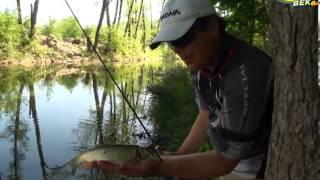 Рыболов -эксперт. Ловля голавля