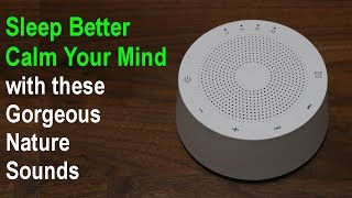 White Sound Machine with Gorgeous Nature Sounds to help you Sleep, Relax & Focus