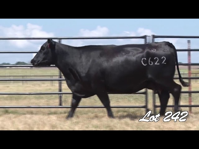 Pollard Farms Lot 242