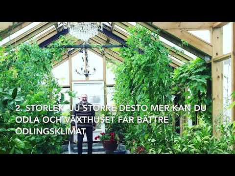 Välja växthus 5 frågor för att välja ut det bästa växthuset för din trädgård