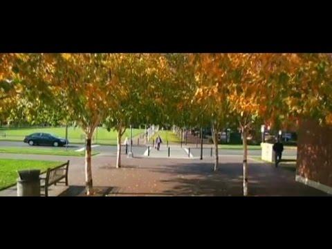 Beaverton - the Best of Oregon