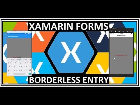 Xamarin Form Borderless Entry
