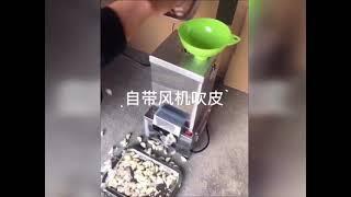 마늘자동 소형 마늘 필러 까는 기계 껍질 제거기 박피기…