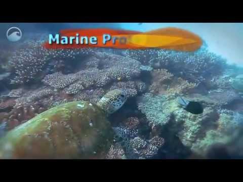 NOAA Ocean Today video: 'Marine Protected Areas'