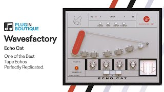 Echo Cat by Wavesfactory | Getting Started with a Tape Delay VST Plugin