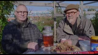 Creatief Beheer: Oogstfeest op De Vlinder tuin Spijkenisse.