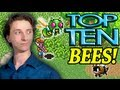Top Ten Bees in Video Games! - ProJared