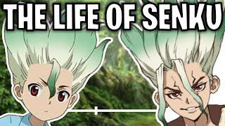 The Life Of Senku Ishigami (Dr. Stone)