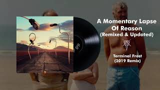 Pink Floyd - Terminal Frost (2019 Remix) YouTube Videos