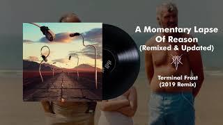 Pink Floyd - Terminal Frost (2019 Remix)