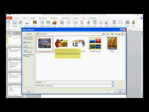 TWB Video Tutorial - How To Insert A Picture In Microsoft PowerPoint