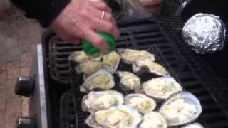 Grilled Oysters on the half shell