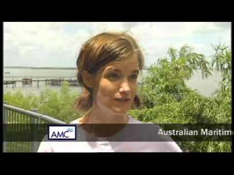 AMC Graduates in the workforce: Marine Conservation